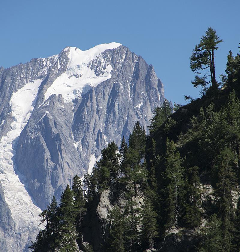 Valdigne, ASD Velo Club Courmayeur Mont Blanc, affiliato Federazione Ciclistica Italiana, Mountain Bike, MTB, Courmayeur, Aosta